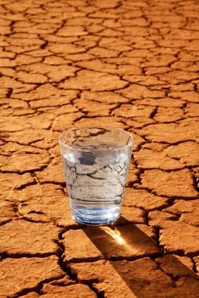 آب از حیاتیترین وسایل مورد نیاز کویر نوردی