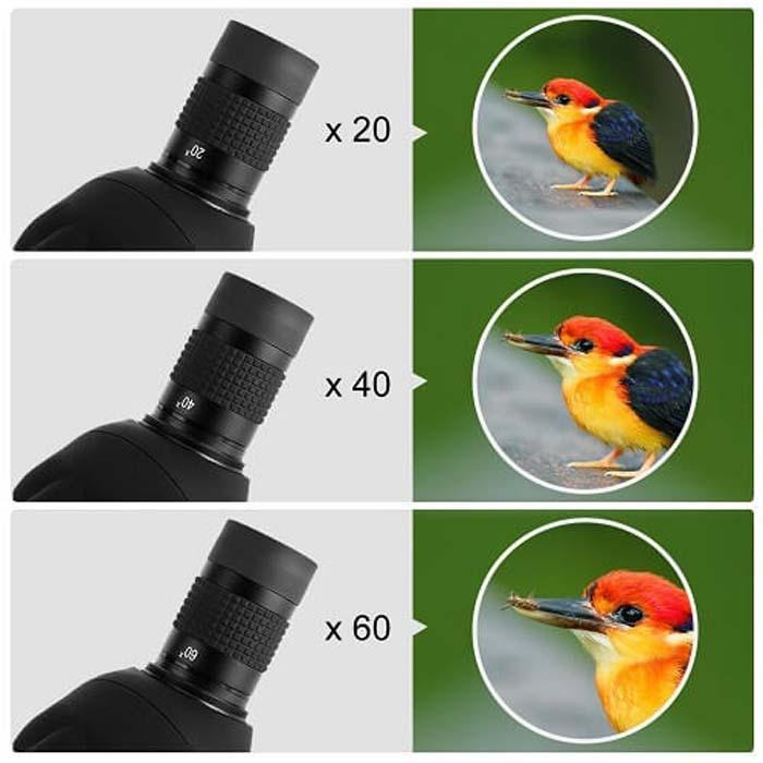 تفاوت دوربین شکاری