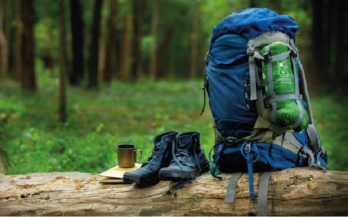 نوع فعالیت کوهنورد
