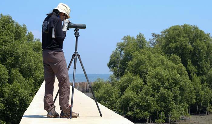 تلسکوپی یکی از انواع دوربین شکاری تک چشمی